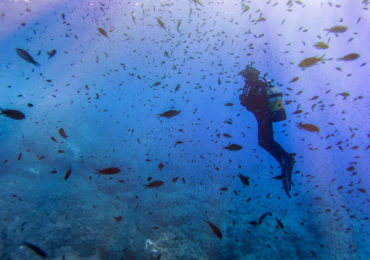 Scuba diving in Ibiza for amateur / professional divers and tekkies
